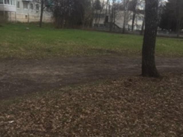 Обустройство спортивной площадки «Родник Здоровья», переулок Чехова д.3, города Киреевск, Тульская область.