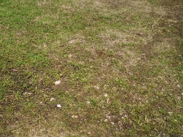 Обустройство спортивной площадки в деревне Средние Байдики Ясногорского района
