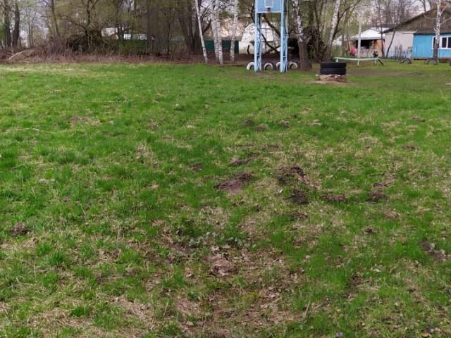Установка спортивной площадки для детей и молодежи в селе Козловка Веневского района